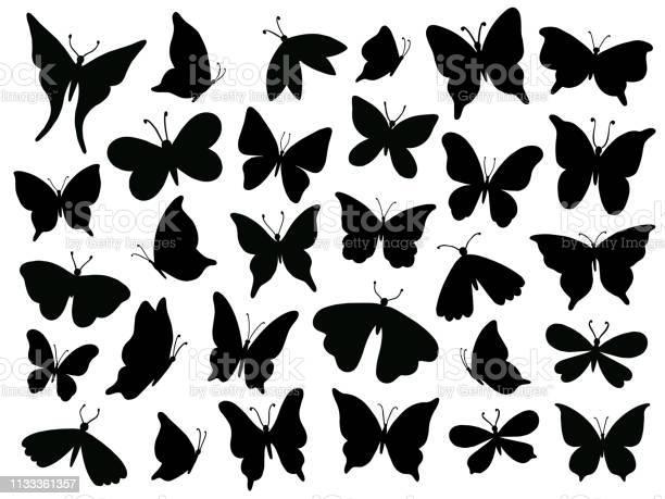 Papillon silhouette mariposa butterfly wing moth wings silhouettes vector id1133361357?b=1&k=6&m=1133361357&s=612x612&h=tg8lpij47touh5dk5ht2xxj7v8bk0t82  iupa e8gg=