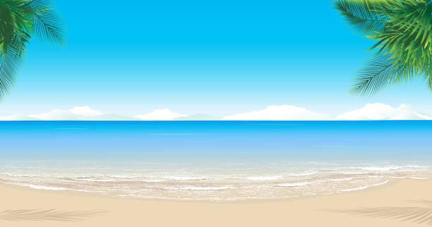 paradise beach - beach stock illustrations