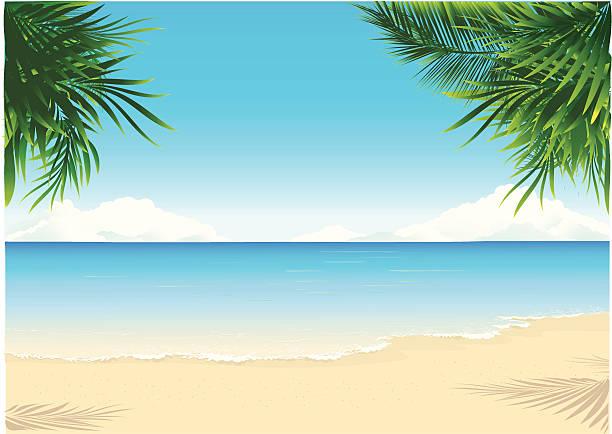 paradise beach - strand stock-grafiken, -clipart, -cartoons und -symbole