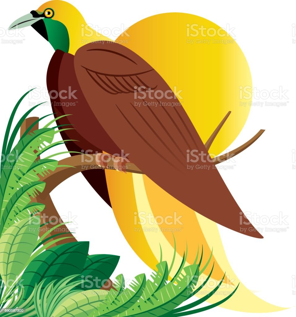 Paradise Birds Malaysia vector art illustration