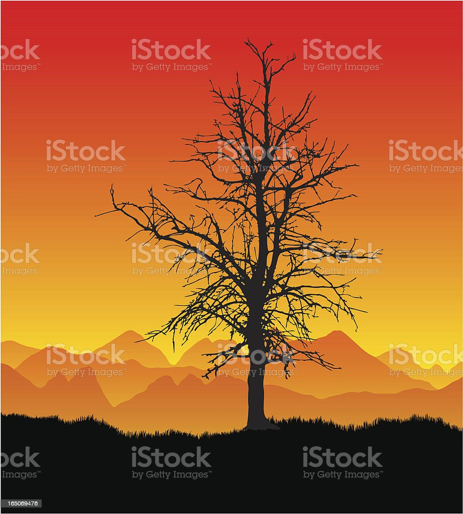 Parched dead tree royalty-free stock vector art