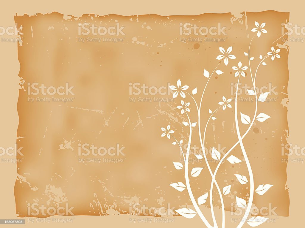 Parchment with flowers royalty-free stock vector art