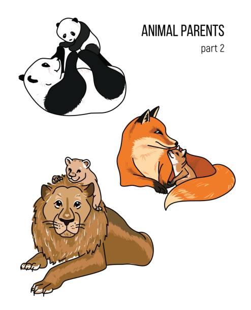 Vectores de Dos Pandas y Illustraciones Libre de Derechos - iStock