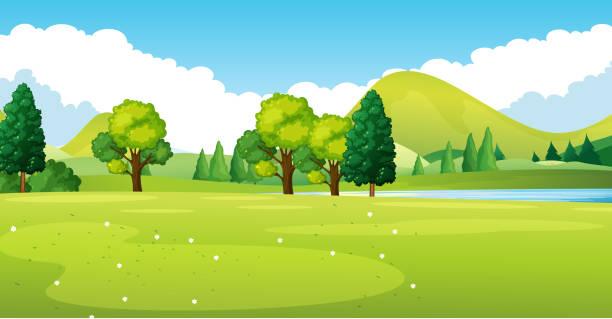 park-szene mit grünen wiese - nationalpark stock-grafiken, -clipart, -cartoons und -symbole