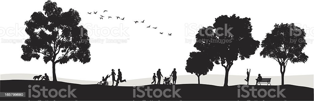 Parkland Vector Silhouette royalty-free parkland vector silhouette stock vector art & more images of adult