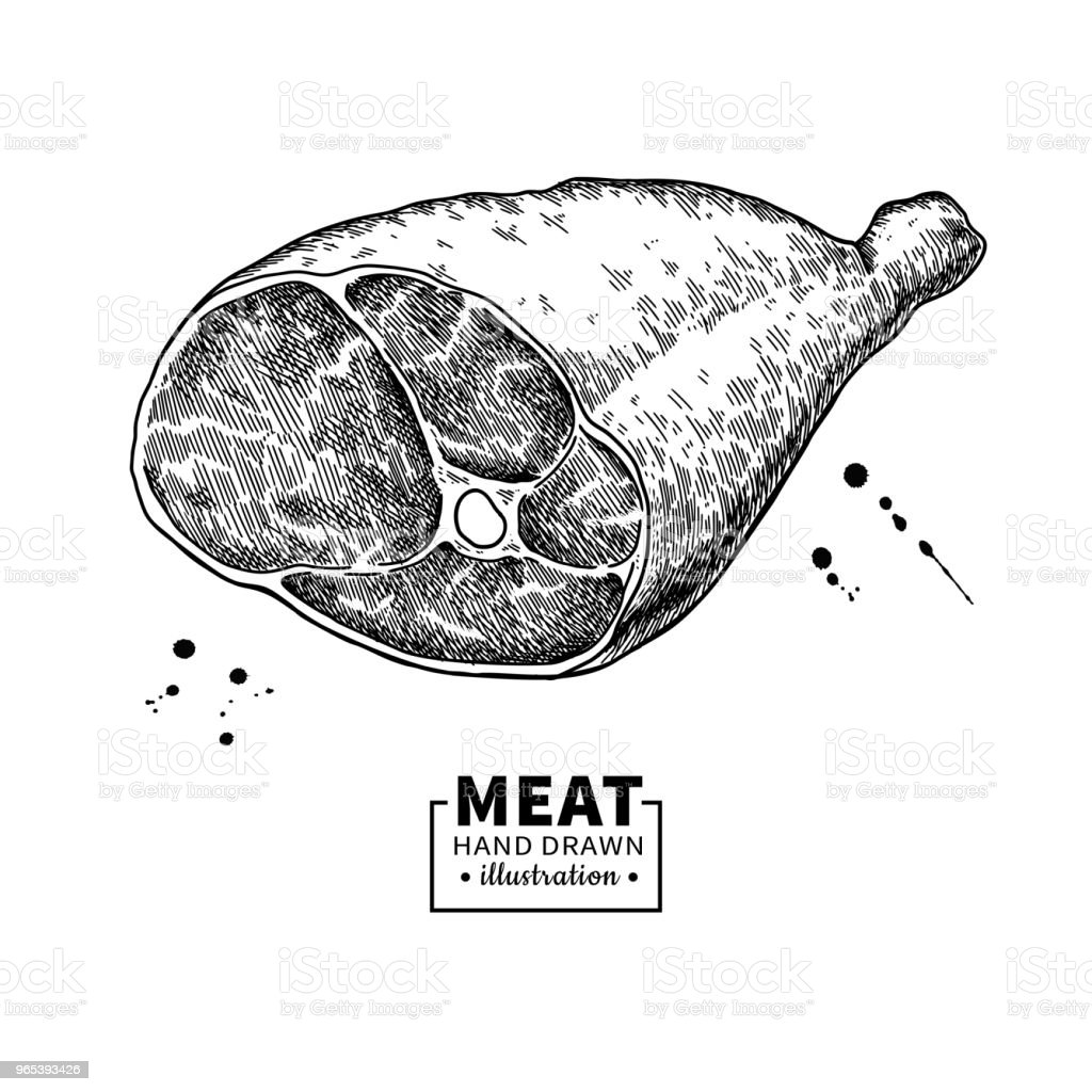Parma ham vector drawing. Hand drawn hamon meat illustration. Italian prosciutto royalty-free parma ham vector drawing hand drawn hamon meat illustration italian prosciutto stock vector art & more images of bacon