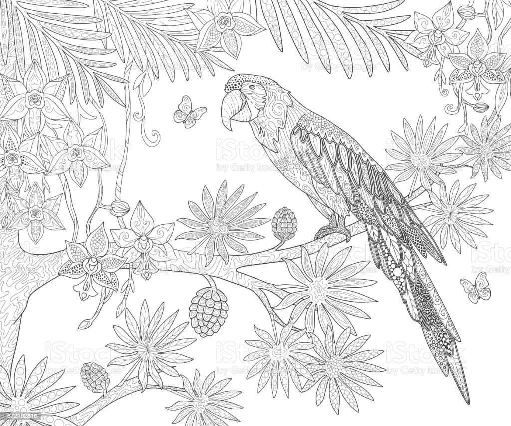 Loros Ara Y Mariposa En árbol Exótico Tropical Y Flores En La Selva ...