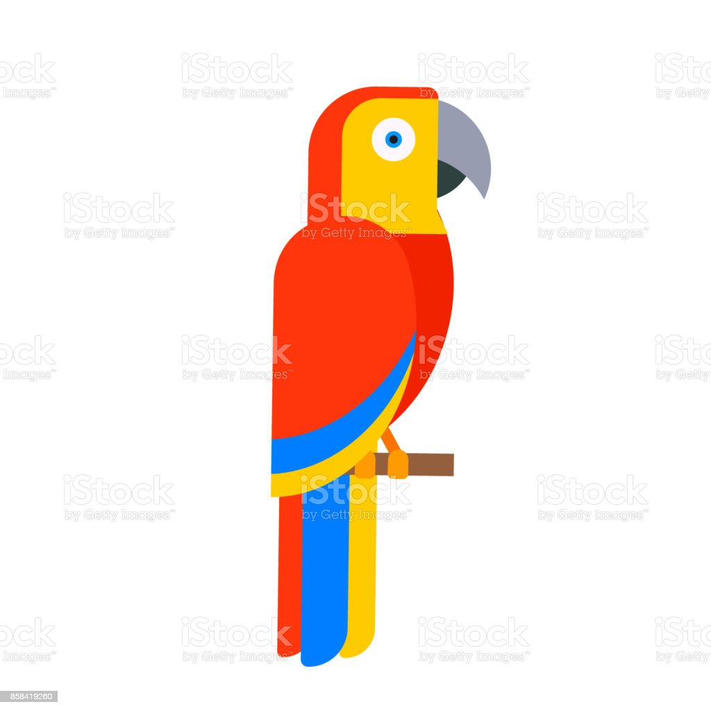 Parrot bird breed species and animal nature tropical parakeets...