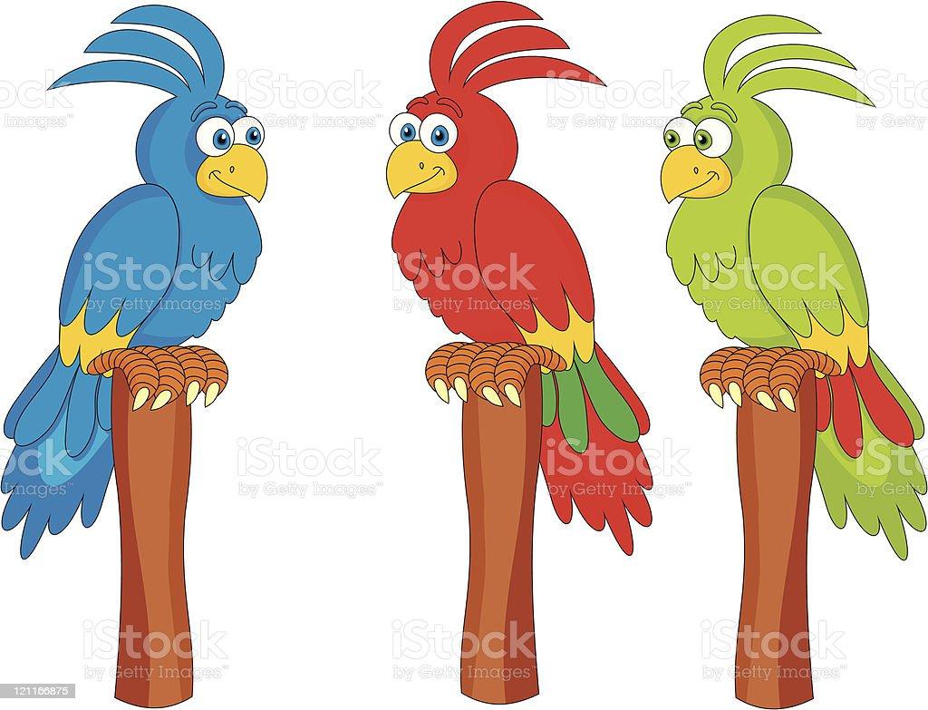Parrot cockatoo cartoon vector illustration vector art illustration
