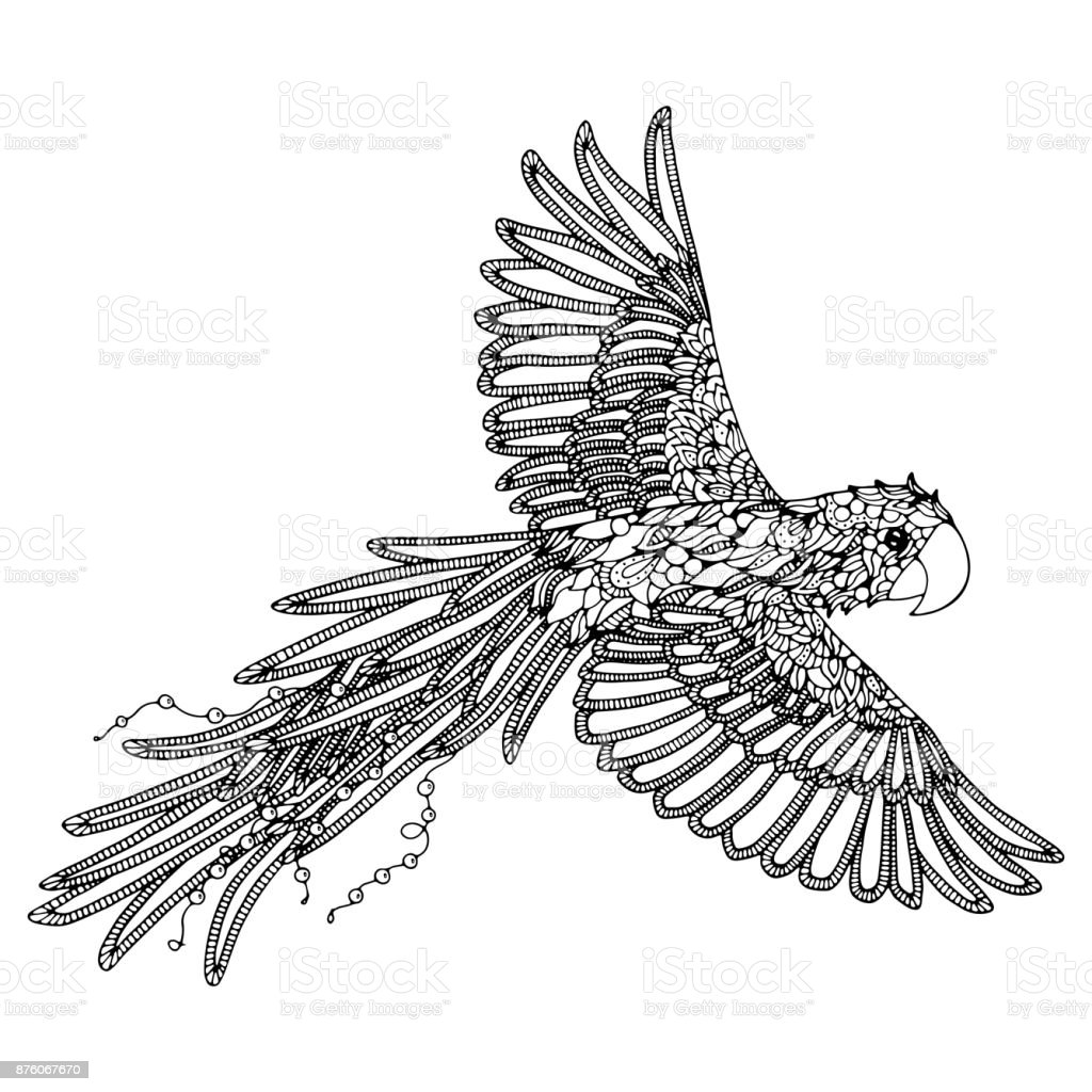 Parrot Coloring Page Scarlet Macaw Stock Vector Art & More Images of ...