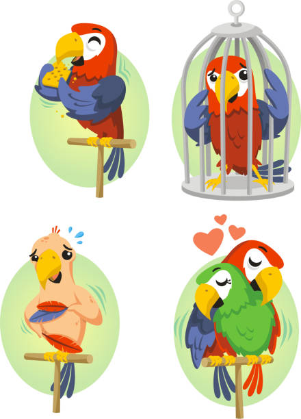 Hellroter Ara Papagei In Käfigs lieben – Vektorgrafik