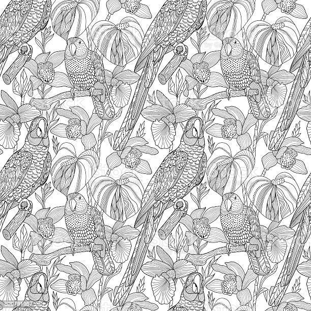 Parrots and tropical flowers vector seamless pattern vector id520791957?b=1&k=6&m=520791957&s=612x612&h=kaze4ur9wwoyfiarelzxvforivq0d9ugcnupepdkmui=