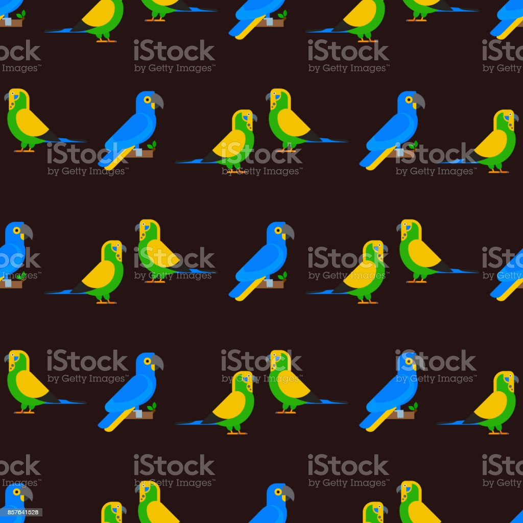 Parrots birds seamless pattern animal nature tropical parakeets...
