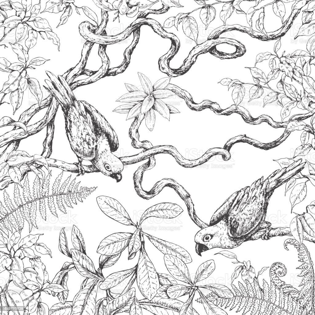 Parrots Sitting on Branches vector art illustration