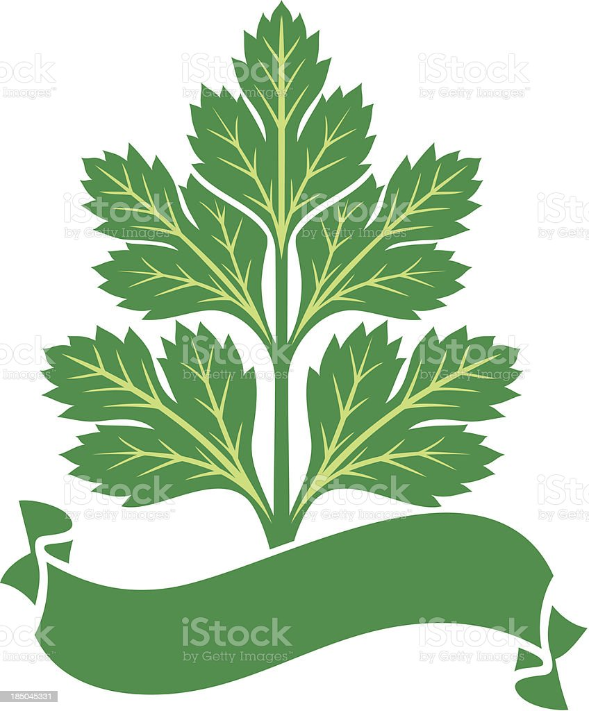parsley label royalty-free stock vector art