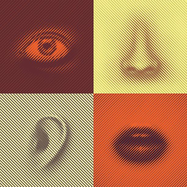 Partie du visage - Illustration vectorielle