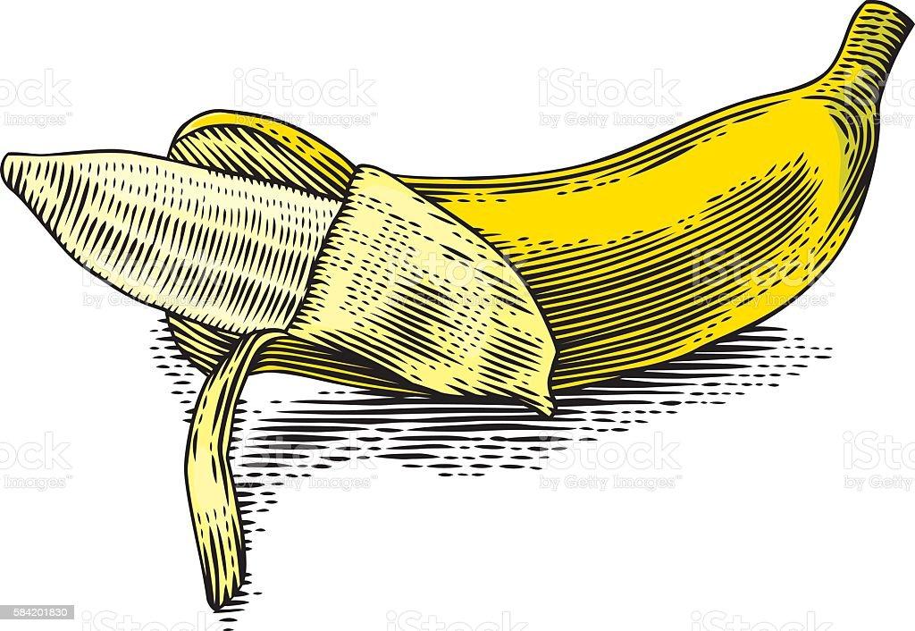 Partially peeled banana vector art illustration