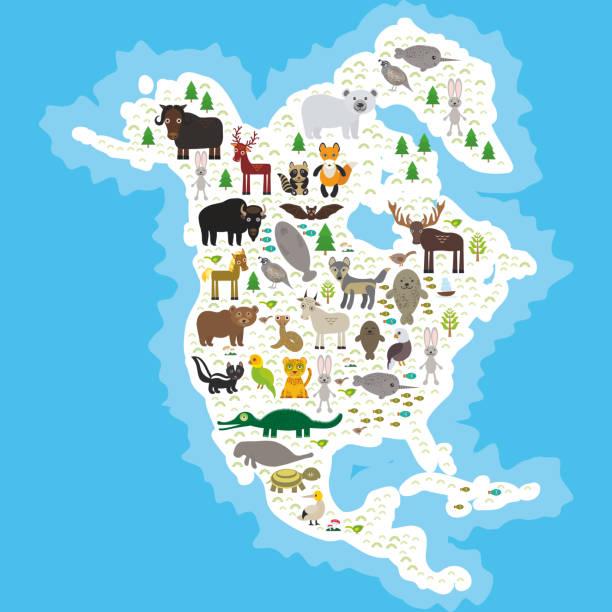 partridge seebär polar bear grubenotter snake mountain goat - bergziegen stock-grafiken, -clipart, -cartoons und -symbole