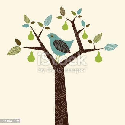 Funky Partridge in a Pear Tree