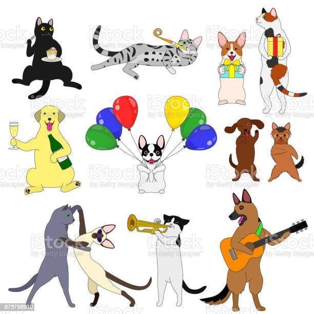 Party cats and dogs elements set vector id873768910?b=1&k=6&m=873768910&s=612x612&h=frnlh vphlrdi2y2yzpljged44dyd7g5dqb4mvsukd0=