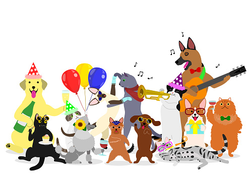 party cats and dogs group