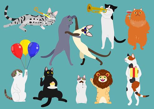 party cats set