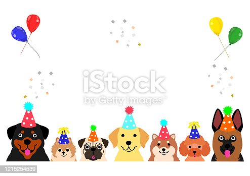 party dogs border