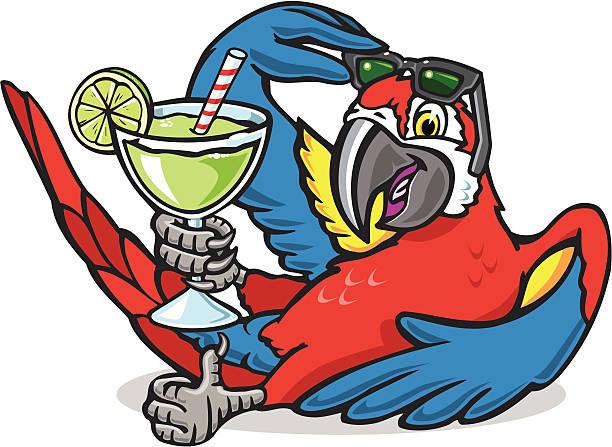 ilustrações de stock, clip art, desenhos animados e ícones de papagaio de - arara
