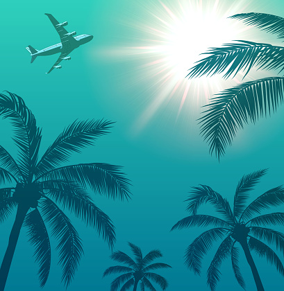 Passenger Airplane Over Palm Trees and Sun in the Sky