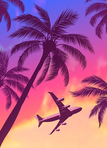 Passenger Airplane Over Palm Trees with Beautiful Blue Pink Orange Sunset