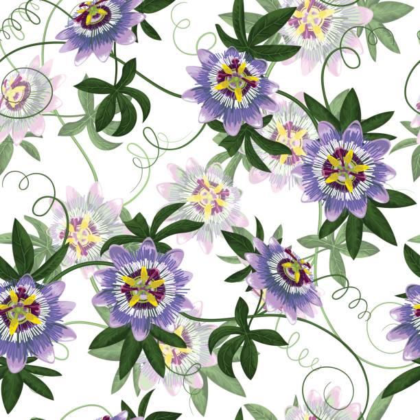 시계 원활한 패턴 - 시계꽃속 stock illustrations