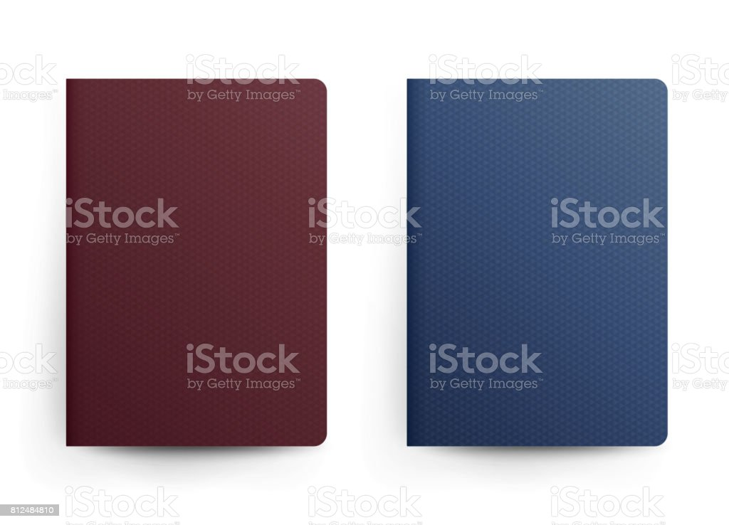 Passport Blank Vector. Front Cover. Realistic Template Illustration. Blue And Red Classic Passport. International Identification Document. Isolated vector art illustration