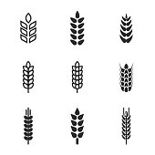 Wheat vector icons. Simple illustration set of 9 wheat elements, editable icons, can be used in logo, UI and web design