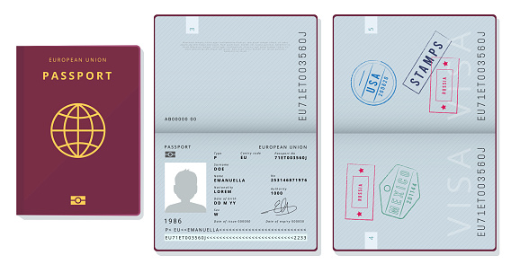 Passport template. Official id document visa sapling pages cards legal travel badges vector pictures