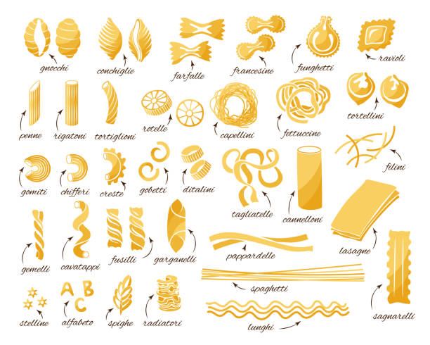 Pasta collection. Set of different type of pasta. Pasta collection. Set of different types. Vector isolated decorative elements for menu or package design. tortellini stock illustrations