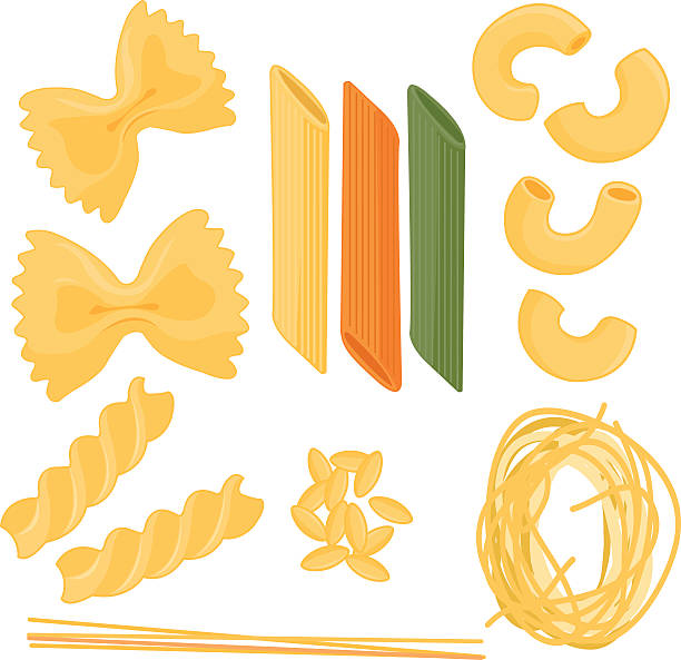 Pasta collection Vector illustration set of different types of pasta: farfalle, penne, spaghetti, elbow pasta, orzo,  fusilli,  on white background, isolated fusilli stock illustrations