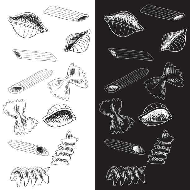 Pasta. Hand drawn sketch Pasta. Hand drawn sketch. Vector illustration penne stock illustrations