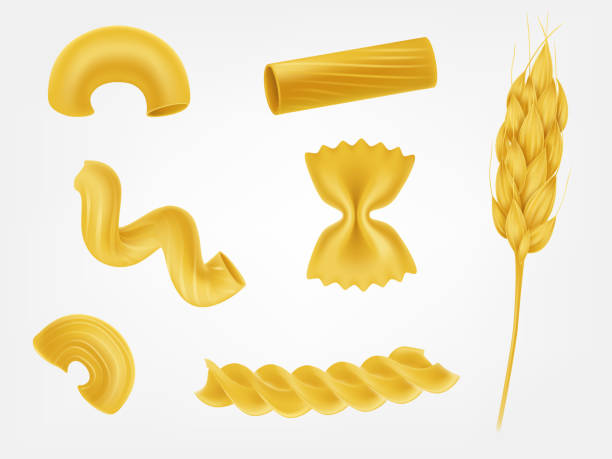Pasta types and forms realistic vector set Various types and shapes pasta, noodles and macaroni with cereal ear realistic vector illustration set isolated on white. Italian national cuisine traditional ingredient. Natural healthy eating food cannelloni stock illustrations
