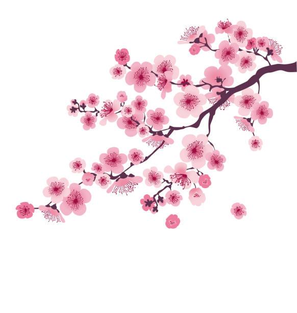 パステル カラー桜の花。ベクトル イラスト。 花が咲くと日本さくら支店 - 桜点のイラスト素材/クリップアート素材/マンガ素材/アイコン素材