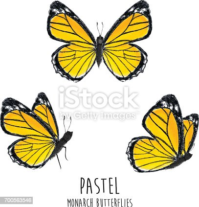 A vector illustration collection of pastel butterflies.