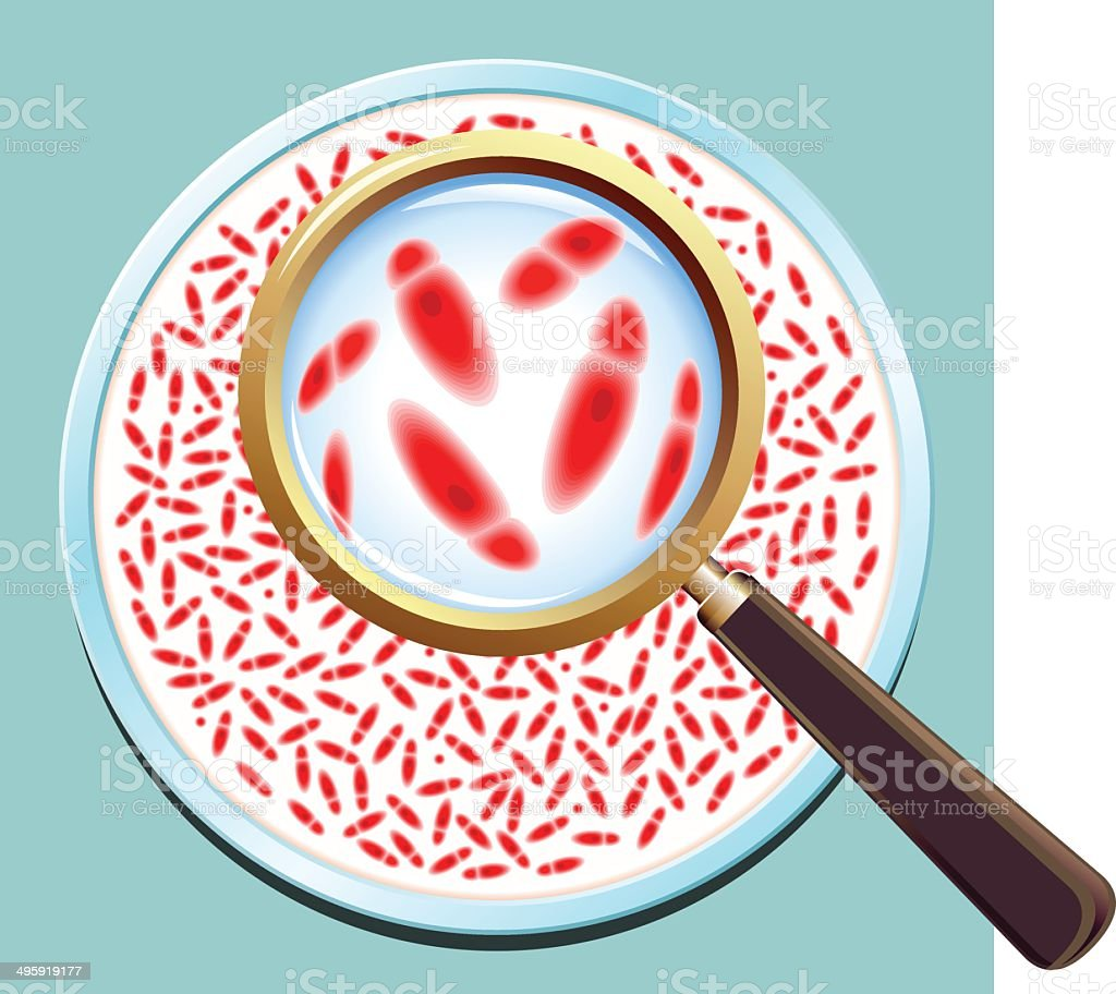 Pathogenic Bacteria Culture vector art illustration