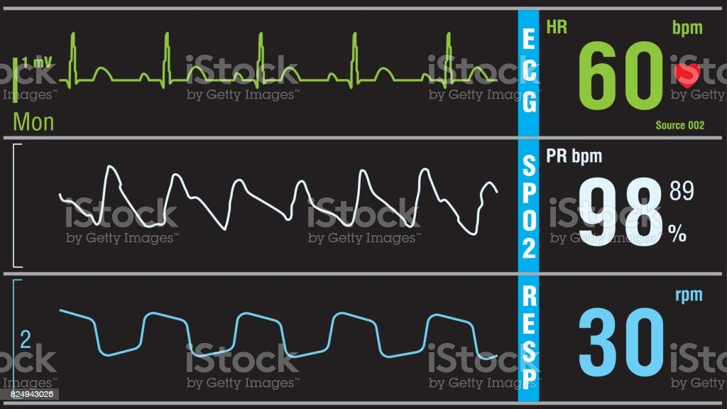 Patient display medical exam vital signs vector art illustration