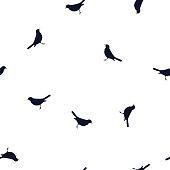 Pattern dark blue birds Blackbird on white