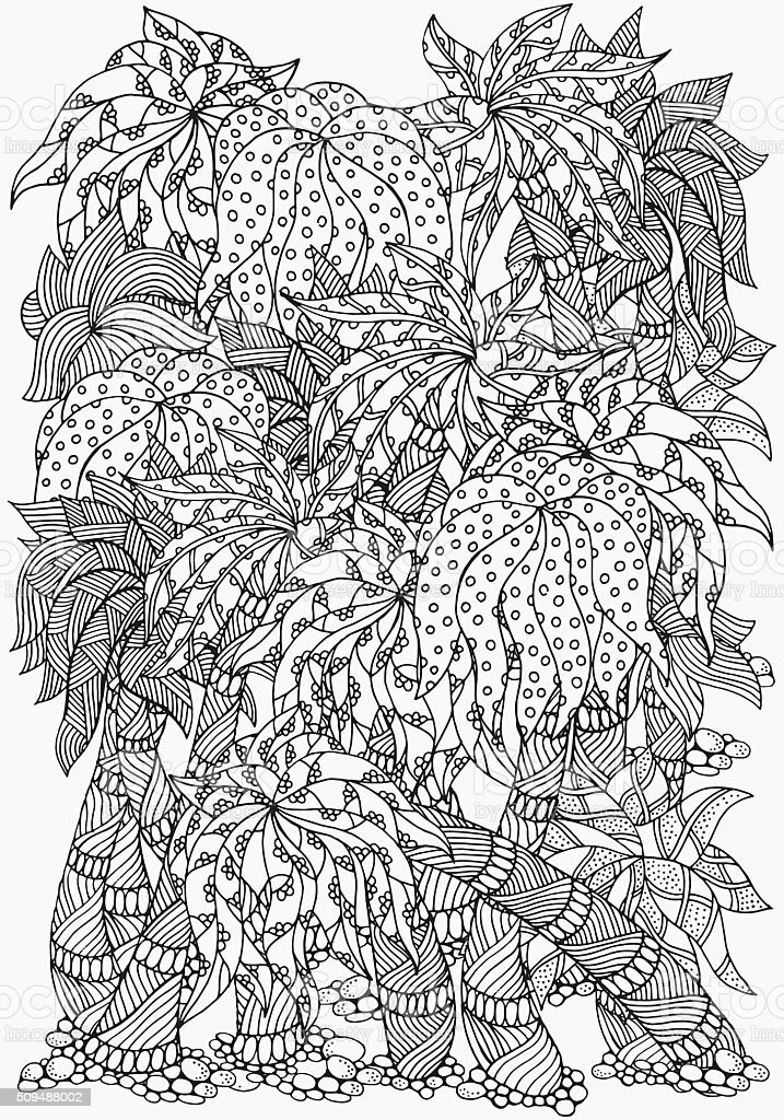 Tree Kangaroo Coloring Page A4 Size - Coloring and Drawing