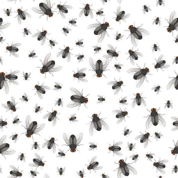 pattern of crawling large and small flies Seamless pattern of crawling large and small flies. Insects. Vector illustration. fly insect stock illustrations