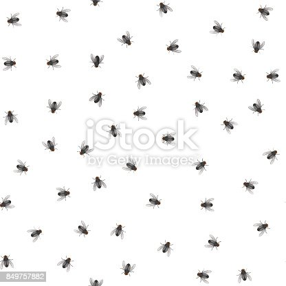 Seamless pattern of creeping flies. Insects. Vector illustration.