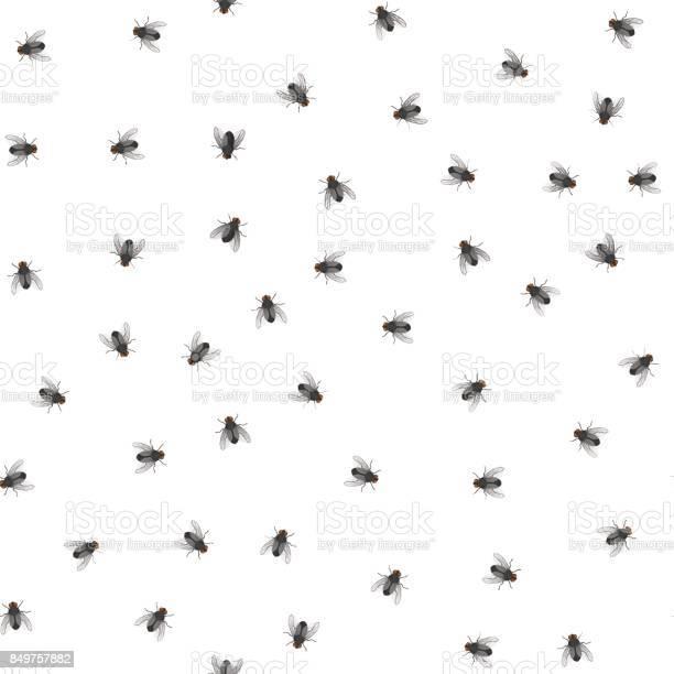Pattern of creeping flies vector id849757882?b=1&k=6&m=849757882&s=612x612&h=knfypahzkbkay5ip cutxhrqi7cginfqbskdnnzmctc=