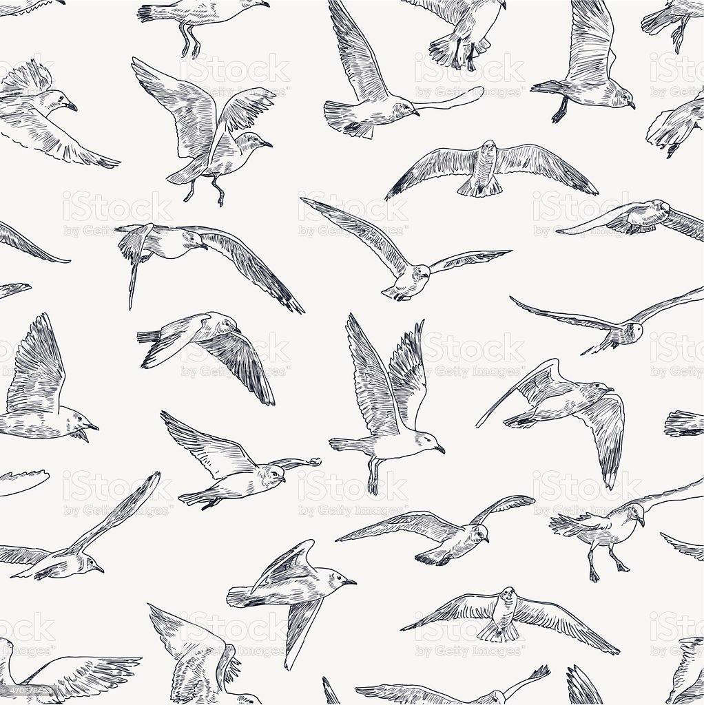 pattern of seagulls vector art illustration