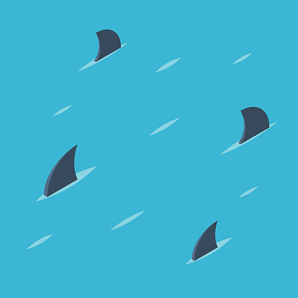 Pattern of shark fins Group of shark at sea. Danger ocean concept. Pattern of shark fins on a blue background. Vector colorful illustration isometric flat style animal fin stock illustrations