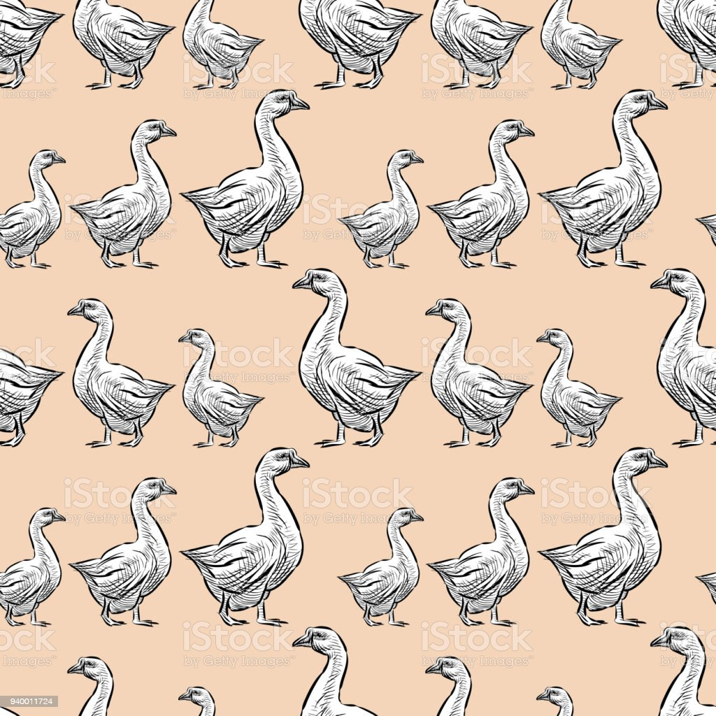 Pattern of the walking geese vector art illustration